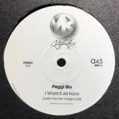 Peggi Blu - I Want It All Now (Justin Van Der Volgen Edit)